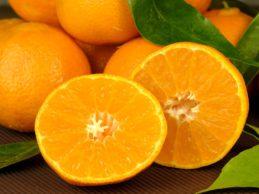 tangerines-3068421_960_720